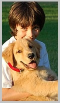 Characteristics of Golden Retrievers - People-Friendly