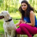 Best Collar for Golden Retriever Dog or Puppy