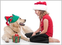 Golden Retriever Gifts For Dog Lovers 3