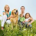 Tips for Finding a Golden Retriever Photographer