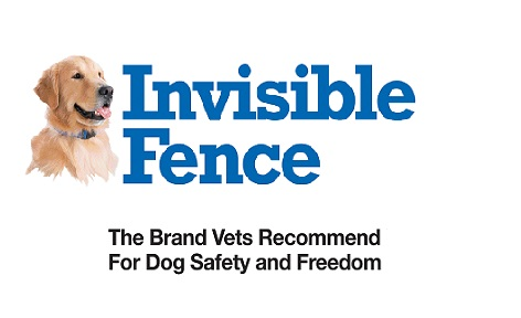 Do Those Invisible Fences Work With Golden Retrievers