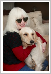 What Can Guide Dogs for the Blind Do