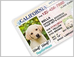 Where Get Golden Retriever License - 1