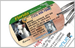 golden retriever License 3