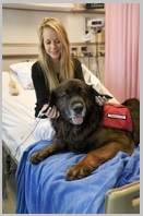 History of Animal Assisted Therapy