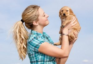 Choosing a Golden Retriever Puppy