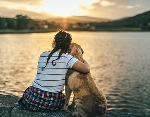 Golden Retriever : Establishing a Healthy And Balanced Relationship With Your Dog