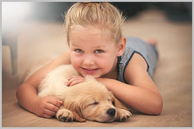 Golden Retriever Puppy Rescue 2