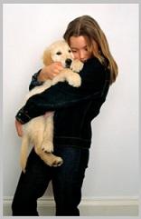 Golden Retriever Puppy Rescue