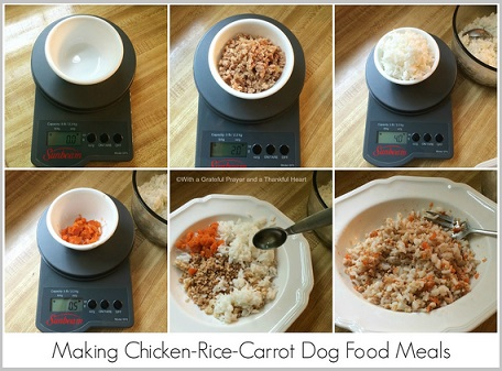 Special diets for golden retriever dogs special diets for dogs can include homemade dog food diets forumfinder Gallery